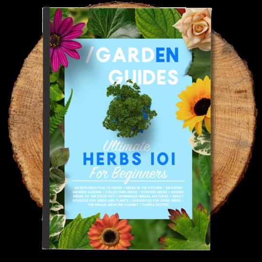 Herbs eBook