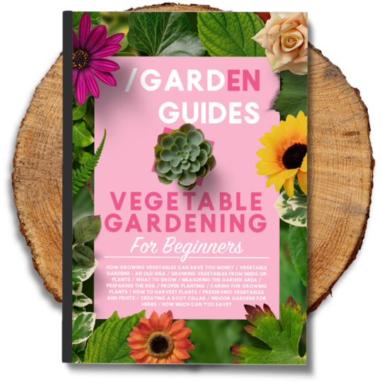 Vegetable eBook