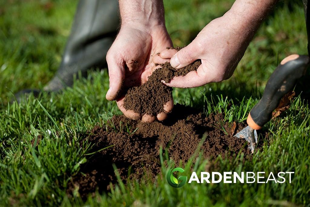 Best Soil Test Kits