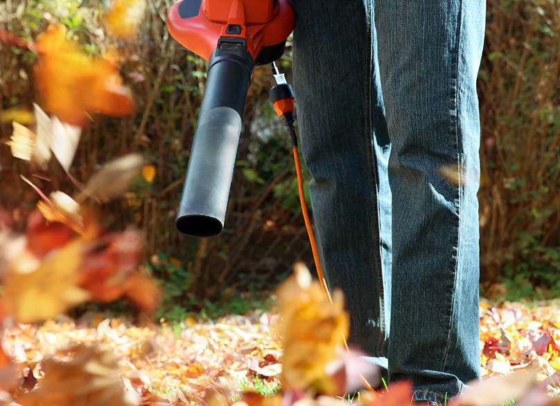 Tidy up your yard with a leaf blower