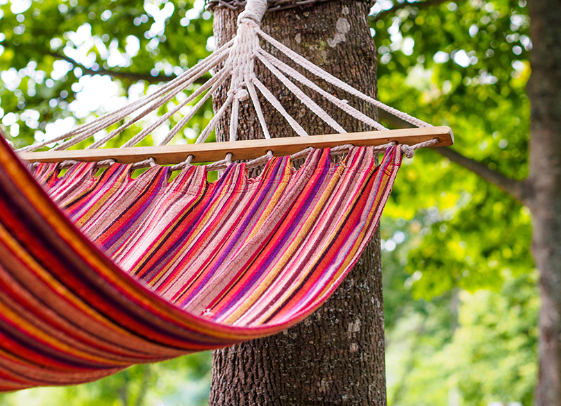 Hammocks can be hung between suitable trees