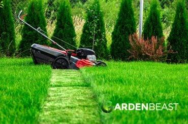 Best Self Propelled Lawn Mower