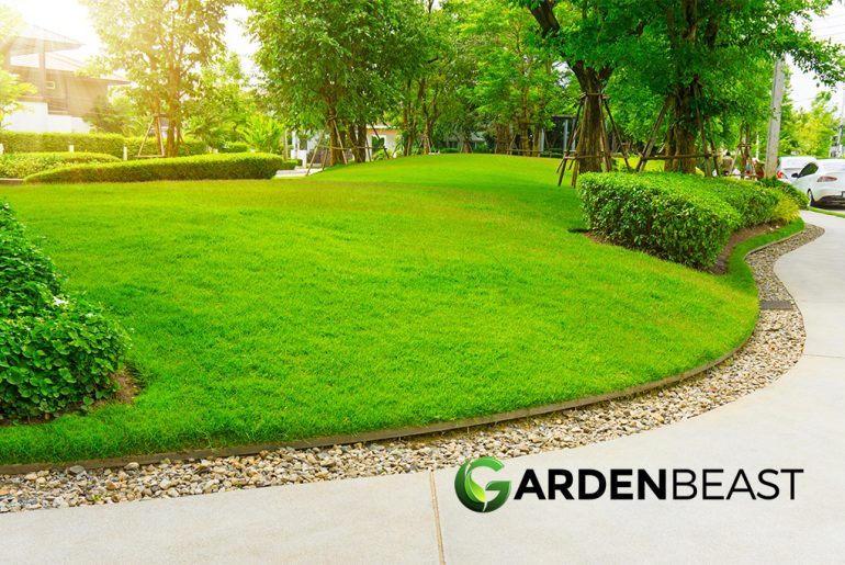 Best Lawn Edger Reviews: Complete Buyer's Guide