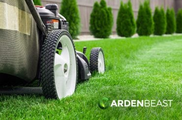 How to Mow Your Lawn