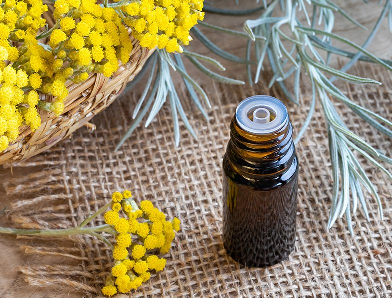 Essential oil made with fresh blooming helichrysum italicum