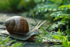Slug & Snail Resistant Plants