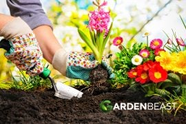 Prepare a Flower Bed
